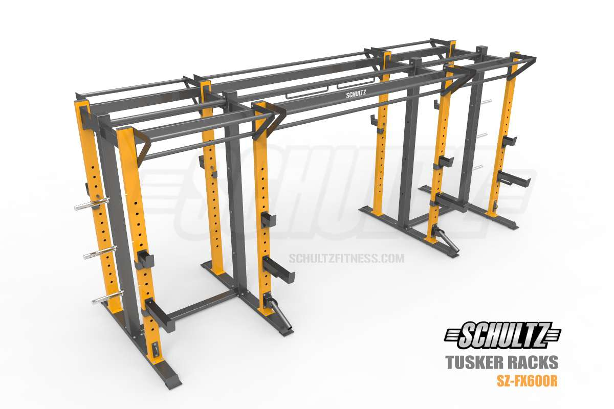 stand alone crossfit rig india