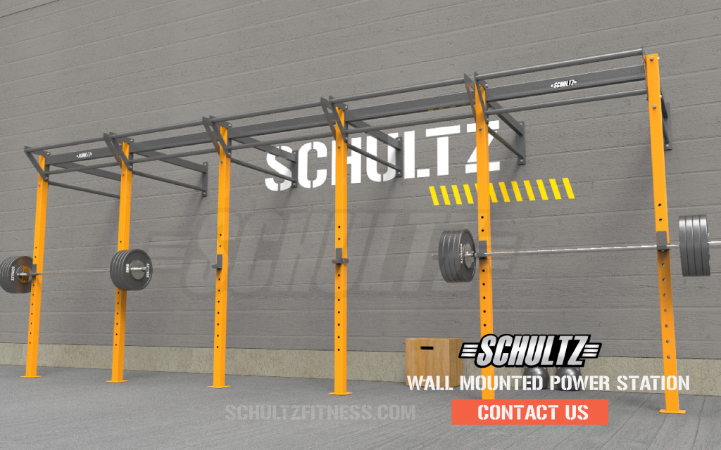 wall mounted rig for gym|studio crossfit rig